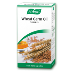 Wheat Germ Oil 120 capsules