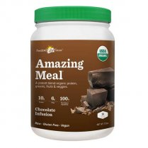 Amazing Meal Chocolate 508g