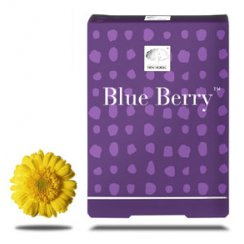 Blue Berry - 60's