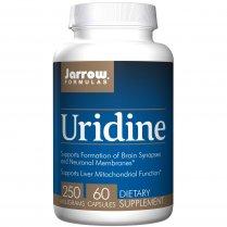 Uridine 60's