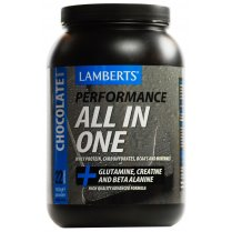 All In One Chocolate Flavour Shake - 1450g powder