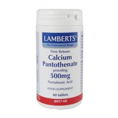 Calcium Pantothenate 500mg Timed Release - 60 tabs
