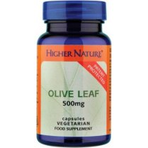 Olive Leaf Extract 500mg 30's