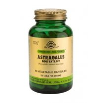 Astragalus Root Extract (S.F.P.) 60 veg caps